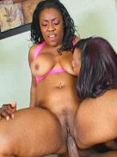 Lick her crack